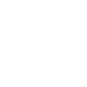 800+ successfully delivered projects