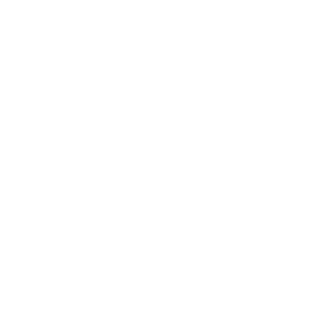 Dedicated 14+ years of experience